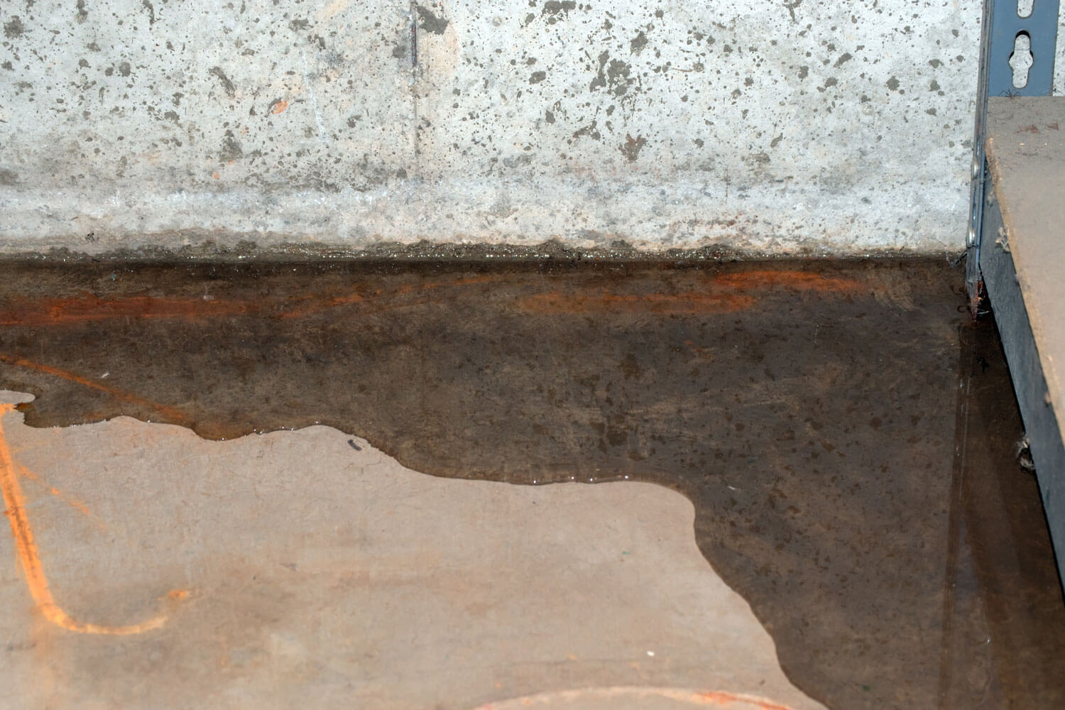 What to Do About a Moldy Crawl Space: 3 Actionable Tips for Homeowners