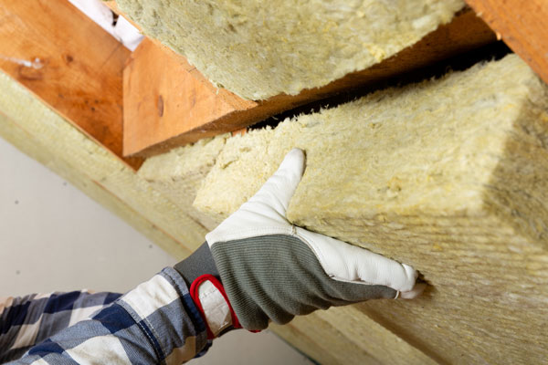 Insulation Removal Services